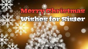Merry Christmas Wishes Quotes MSG for Sister
