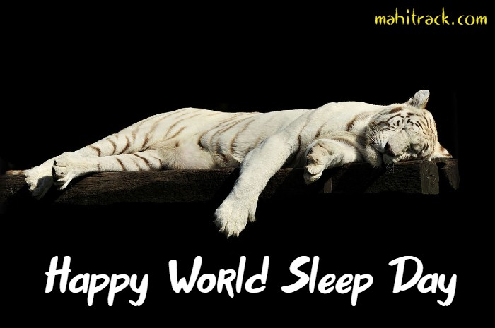 happy world sleep day image full hd download free
