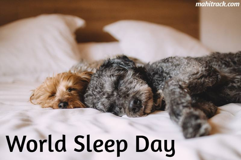 world sleep day hd image 2020
