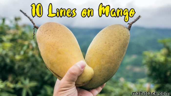 10 Lines on Mango in Hindi | आम पर दस लाइन